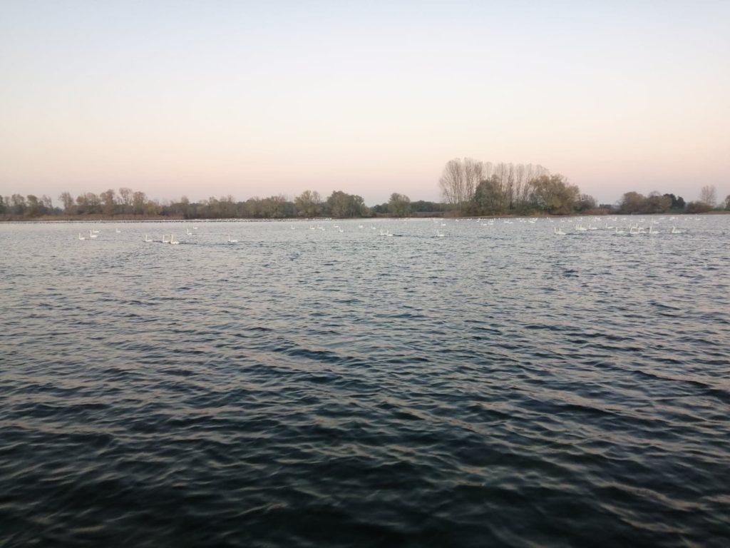 Hebergement a proximité pour la Peche des carnassiers en bateau