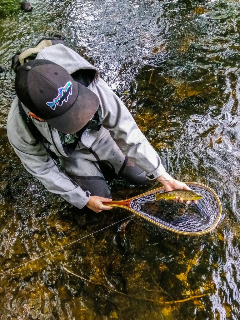 Belle truite prise dans l'Aube, des pepites a pêcher que se soit aux leurres, aux toc ou a la mouche