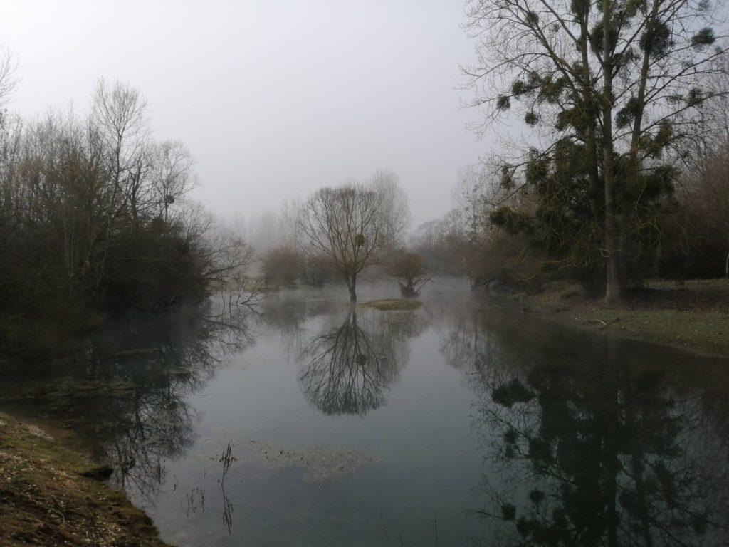 Beau spot en Seine idéal pour pecher des carnassiers.