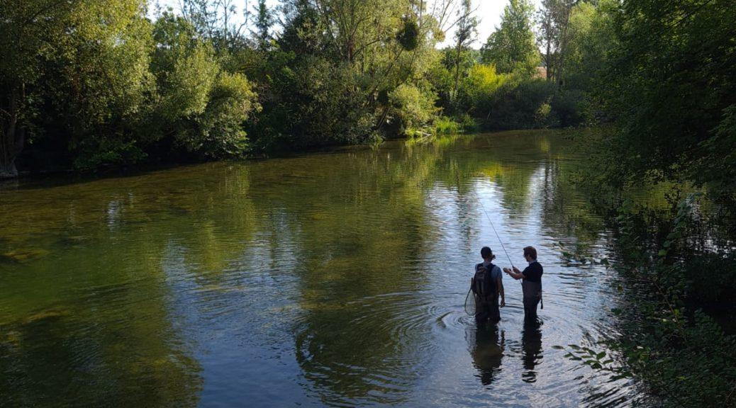 La pêche du brochet sur les lacs de la Foret d'Orient réserve de belle surprise