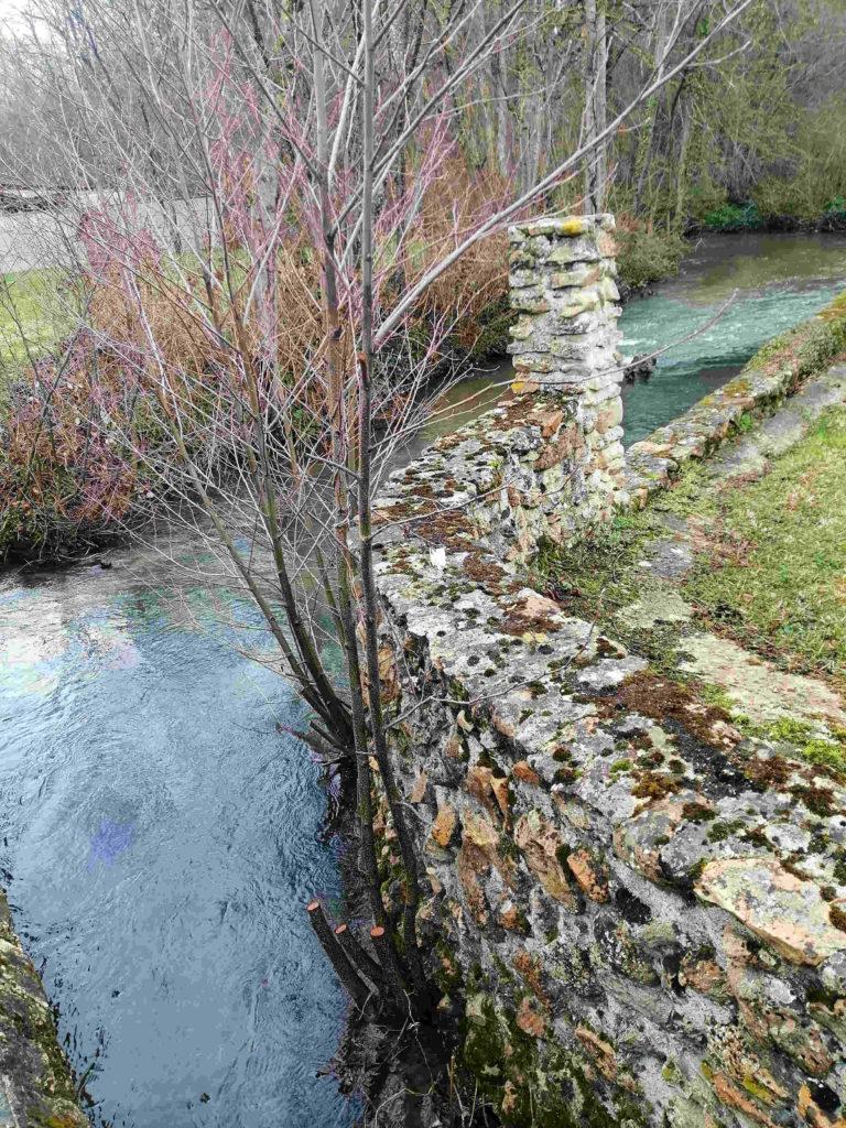 Un jolie poste typique des ruisseaux de l'Aube, idéal a pecher au toc.