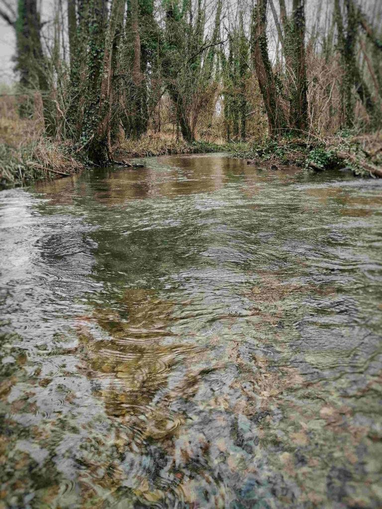 Un poste d'été à pecher au toc en ruisseau